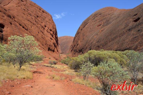 Landschaft bei Alice Springs.  Foto: Christian Maskos