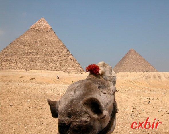 Jetzt ab 109€ nach Ägypten und Jordanien, Hin- und Rückflug un Gepäck inklusive. Foto: Christian Maskos