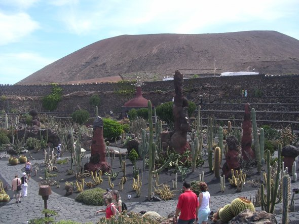 Der Jardin de Cactus auf Lanzarote. Urheber: Terry Whalebone. Lizenz: creative commons (Namensnennung)