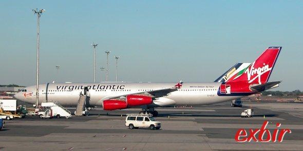Pet Airways: Eine Airline nur fr Haustiere - RP ONLINE
