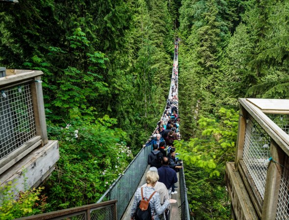 Capilano Suspension Bridge, Kanada