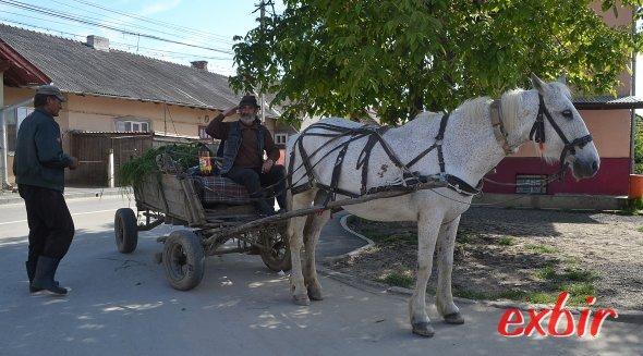 Eher selten - wenn dann aber eher in Dörfern und kleineren  Städten wie Turda erlebt man auch das klassische Rumänien mit Pferdewagen auf den Straßen und traditionell gekleiderter Bürger.  Foto: Christian Maskos