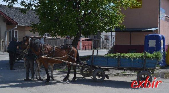 Willkommen in Rumänien.    Auch in und rund um Suceava  findet ihr noch viele PFerdewagen als Alltagstransport-Mittel.  Foto: Christian Maskos