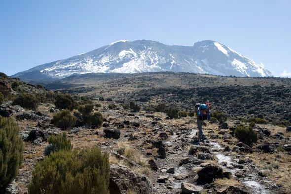 Wanderer am Kilimanjaro. Urheber: Stig Nygaard, Lizenz: creative commons (Namensnennung)