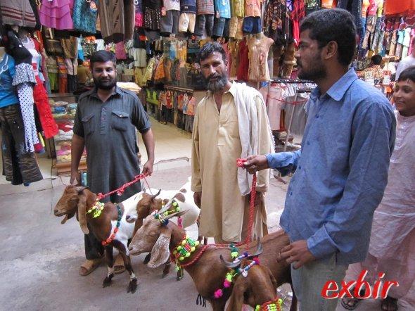 Diese Händler glaubten wirklich, sie könnten uns eine Ziege verkaufen. ©FlyWolf