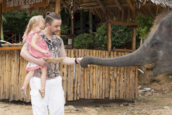 Den Elefanten ganz nah sein: In Thailand ist dies möglich.