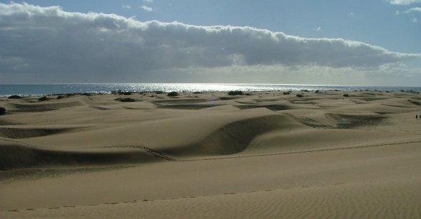 In den Dünen von Maspalomas, Gran Canaria