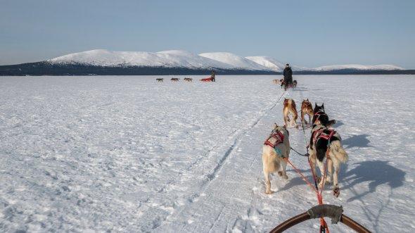 Pallasjärvi, Finnland. Urheber: Markus Trienke. Lizenz: creative commons (Namensnennung, unter gleichen Bedingungen)