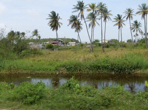 Unterwegs in Guyana.