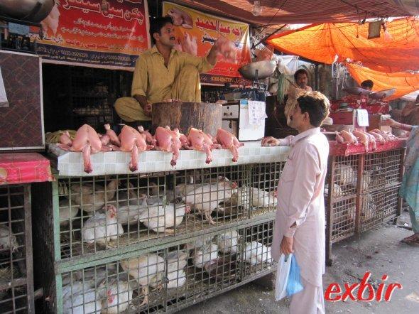 Hühnerhändler in Karatschi. Im Käfig die lebenden, darüber die, die es hinter sich haben. ©FlyWolf
