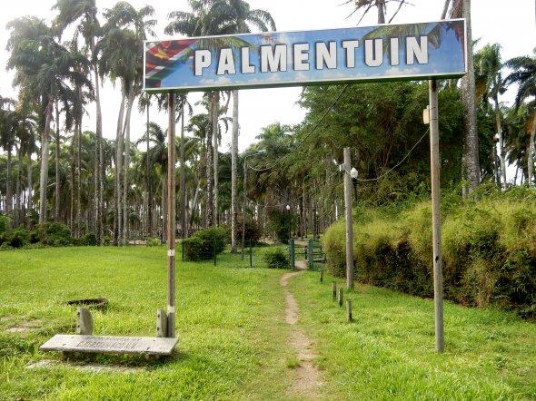 Paramaribo Palmentuin.